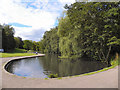 SJ8986 : Bramall Hall Park Lake by David Dixon