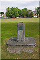 TQ4470 : Drinking Fountain, Chislehurst Common by Ian Capper