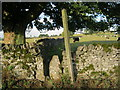 SK2165 : Stone stile for footpath off Conksbury Lane by peter robinson