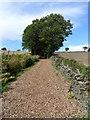 SE2406 : Gunthwaite Lane by Samantha Waddington
