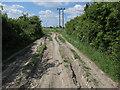 TL5872 : Bracks Drove by Hugh Venables