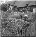 SP1854 : Anne Hathaway's Cottage, Shottery by nick macneill
