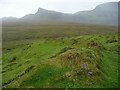 NG4472 : Old wall on the slopes of Druim Fada by John Allan