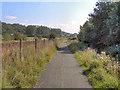 SD6808 : Path Alongside Middle Brook by David Dixon