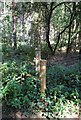 TL1141 : Demarcation Fence - Mountain Bikers Area Rowney Warren Woods by Martin