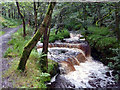 SD9728 : Weir above the site of Lower Lumb Mill, Colden Clough by Phil Champion