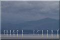 NX9042 : Robin Rigg Wind Farm : Week 35 winner