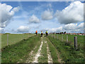 TQ3405 : Bridleway to Warren Road by Simon Carey