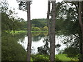 SE7169 : South Lake seen through the trees at Castle Howard by pam fray