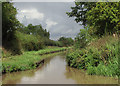 SJ6761 : Shropshire Union Canal north-east of Church Minshull, Cheshire by Roger  Kidd