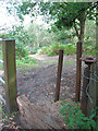 TF6619 : Access route into Bawsey Country Park by Evelyn Simak