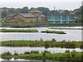 TQ2276 : The Wetland Centre by Colin Smith