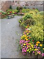 SX9472 : Garden in Teignmouth by Derek Harper