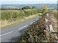 SE2909 : Trimmed hedgerows along Upper Field Lane by Christine Johnstone