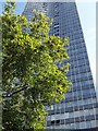 TQ3078 : Millbank Tower by PAUL FARMER