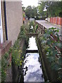 TQ3267 : Swain Road: looking upstream at the crossing of the Norbury Brook by Christopher Hilton