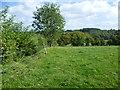 TQ6464 : Rural view near Meopham Green by Marathon