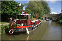 ST7666 : Kennet & Avon Canal, near Bathampton by Stephen McKay