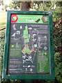 TQ4172 : Mottingham Wood Trail Information Board by David Anstiss