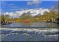 SK2168 : Weir on River Wye, Bakewell by Paul Buckingham