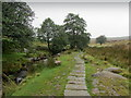 SK2580 : Footpath beside Burbage Brook by Chris Heaton
