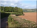 ST1335 : Lane and ploughed field near Roebuck Gate Farm : Week 38