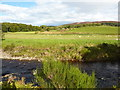 NJ4439 : River Deveron at Aswanley by Peter Barr