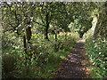 SD6811 : Footpath to Barrow Bridge by Philip Platt