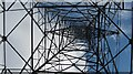 NT5659 : Lammermuir pylon by Richard Webb