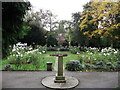 TQ3574 : Rose Garden, Brenchley Gardens by David Anstiss