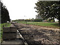 TQ3377 : Path in Burgess Park. by David Anstiss