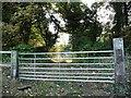 SE4910 : Gate into wooded former quarry by Christine Johnstone