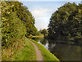 SJ7388 : Bridgewater Canal, Dunham Massey by David Dixon