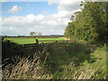 ST5784 : Footpath junction by Tockington Mill Rhine by Robin Stott