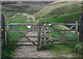 SD9513 : Pennine Bridleway, Longden End Valley by michael ely