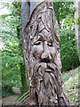ST7073 : Wood carving in Golden Valley, Wick, Bristol : Week 40