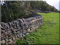 SK3453 : Drystone wall, the Tors, Crich by John Darch