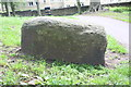 SE1038 : Benchmark on rock in Myrtle Park by Roger Templeman