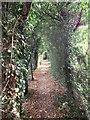 TQ4163 : Path to Keston Court by David Anstiss