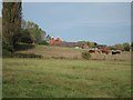 TQ7740 : Oast House at Paley Farm, Hill Top, Cranbrook, Kent by Oast House Archive