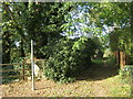 TL0998 : Public footpath in Sutton by peter robinson