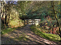 SD9504 : Wooden Bridge Over River medlock by David Dixon