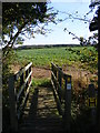 TM3375 : Footbridge of the footpath to Cookley by Adrian Cable