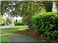 SY6890 : View south in the Borough Gardens, Dorchester by Brian Robert Marshall