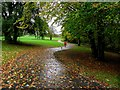 H4572 : Leaf covered path, Omagh by Kenneth  Allen