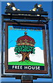 SO5014 : Pub sign, Royal Oak, Monmouth by John Grayson