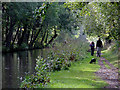 SK1313 : Canal and  towpath near Fradley Junction, Staffordshire by Roger  Kidd
