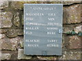 ST5855 : A fine memorial stone at Sherborne by David Purchase