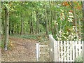 SK6683 : Well-used path into Barnby Fox Covert by Christine Johnstone