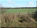 SK6533 : Field on Cotgrave Wolds by Alan Murray-Rust